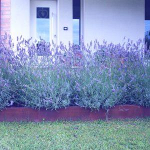 giardino di abitazione a Cavallino
