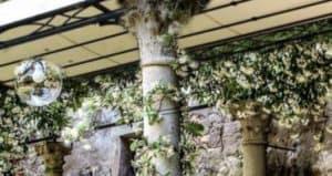 camminamento giardino storico Venezia