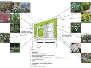 planting design paolo nardin architetto